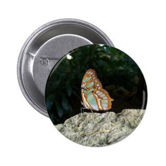 Mariposa atada de Jay Pin Redondo De 2 Pulgadas