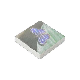 Mariposa azul bonita imán de piedra