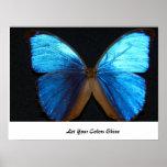 Mariposa azul brillante impresiones