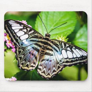 Mariposa azul de las podadoras mousepad
