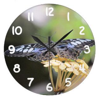 Mariposa azul de las podadoras reloj redondo grande