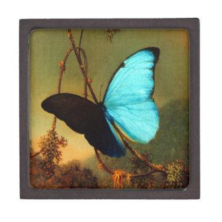 Mariposa azul de Martin Johnson Heade Morpho Caja De Recuerdo De Calidad