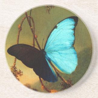 Mariposa azul de Martin Johnson Heade Morpho Posavasos Para Bebidas