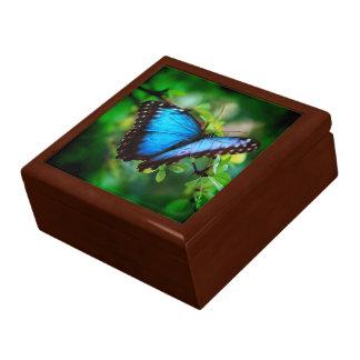 Mariposa azul de Morpho Caja De Regalo