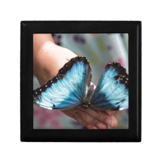 Mariposa azul de Morpho Caja De Joyas