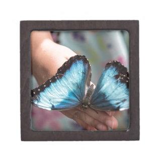 Mariposa azul de Morpho Cajas De Regalo De Calidad