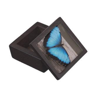Mariposa azul de Morpho Caja De Joyas De Calidad