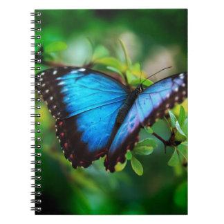Mariposa azul de Morpho Spiral Notebooks