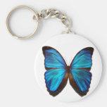Mariposa azul de Morpho Llaveros