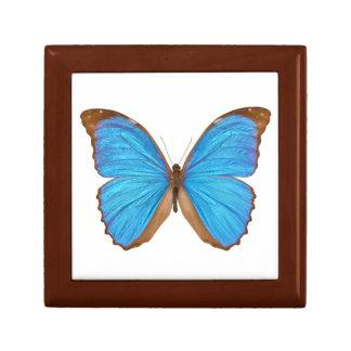 Mariposa azul de Morpho (Menelaus Morpho azul, Mor Caja De Regalo