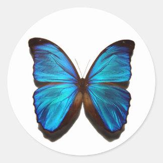 Mariposa azul de Morpho Pegatina Redonda