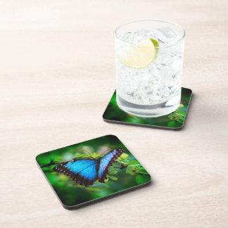 Mariposa azul de Morpho Posavasos