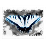 Mariposa azul del choque tarjeta postal