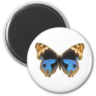 Mariposa azul del pensamiento imán redondo 5 cm