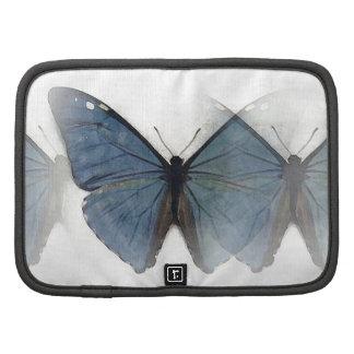 Mariposa azul organizadores