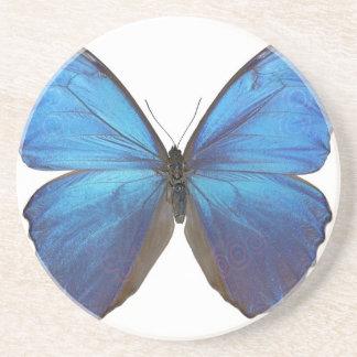 Mariposa azul gigante de Morpho Posavasos Para Bebidas