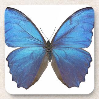 Mariposa azul gigante de Morpho Posavasos