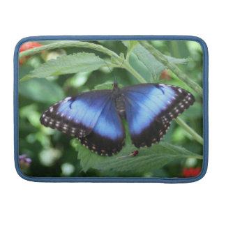 Mariposa azul grande 2 funda para macbook pro