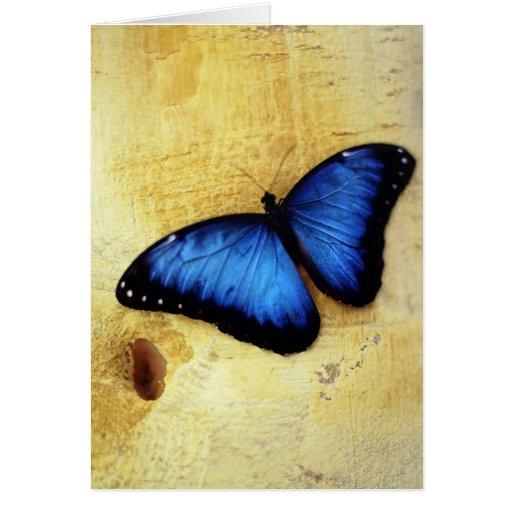Mariposa azul hermosa de Morpho Tarjeta De Felicitación