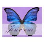 Mariposa azul magnífica de Morpho Tarjeta Postal