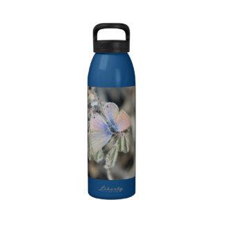 Mariposa azul marina botellas de agua reutilizables