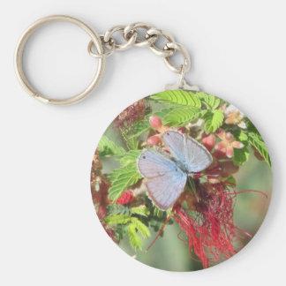 Mariposa azul marina llavero redondo tipo pin