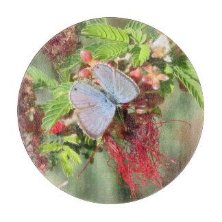 Mariposa azul marina tablas de cortar