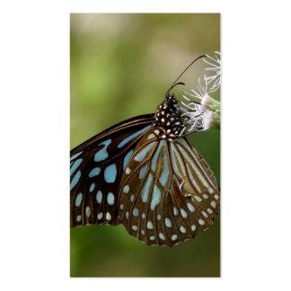 Mariposa azul marino del tigre Tirumala Septentri Tarjeta De Visita