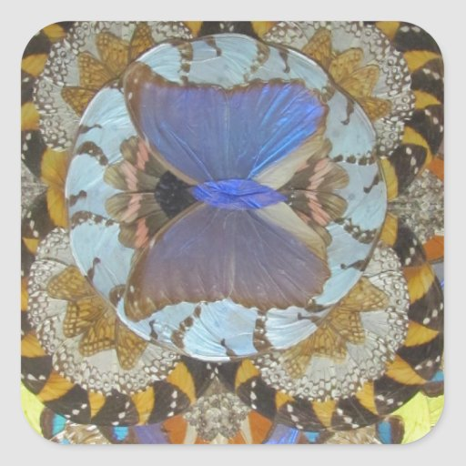Mariposa azul colcomanias cuadradas personalizadas