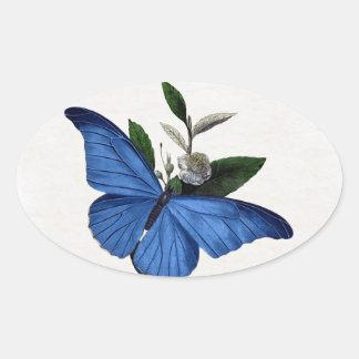 Mariposa azul pegatina ovalada