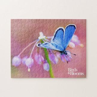 Mariposa azul puzzles