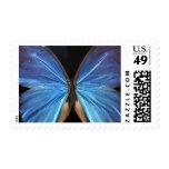Mariposa azul radiante