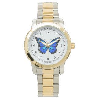 Mariposa azul reloj de mano