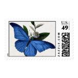 Mariposa azul sellos