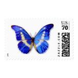Mariposa azul y blanca brillante franqueo
