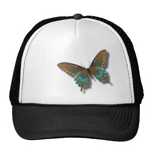 Mariposa: Azul y Brown Swallowtail Gorros