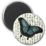 Mariposa azul y negra de la pizarra en la escritur iman de nevera
