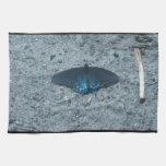 mariposa azul y negra en la playa arenosa toallas