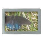 mariposa azul y negra hebillas cinturon rectangulares