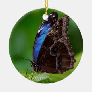 Mariposa azul y negra hermosa adorno redondo de cerámica