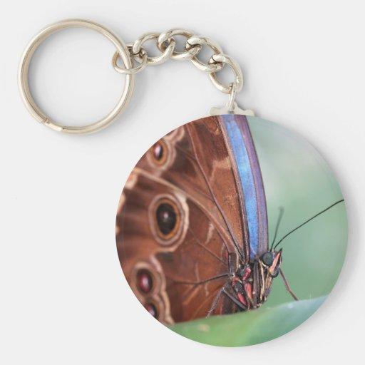 Mariposa básica del llavero del botón