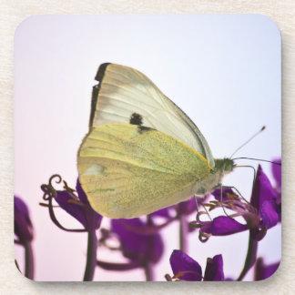 Mariposa blanca en las flores púrpuras posavasos de bebida