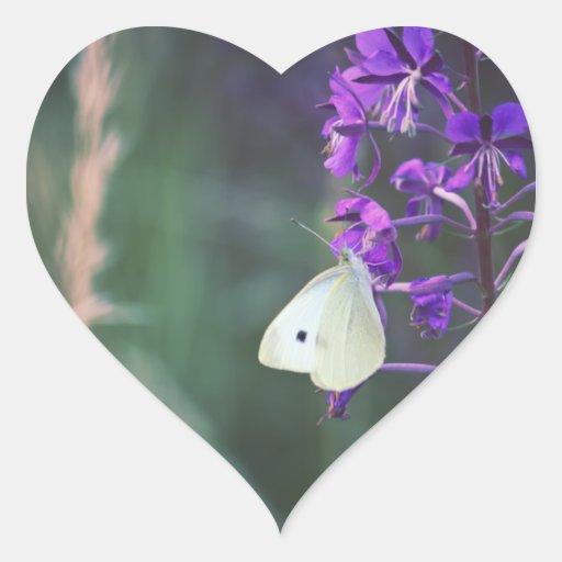 Mariposa blanca en Wildflower púrpura Calcomania De Corazon