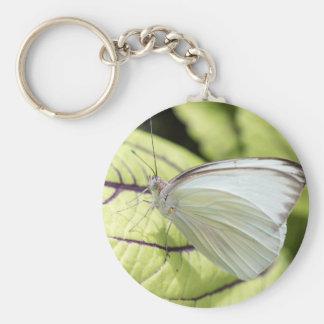 Mariposa blanca meridional llavero redondo tipo pin
