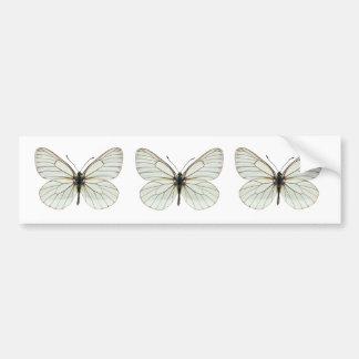Mariposa blanca Negro-veteada aislada Pegatina De Parachoque