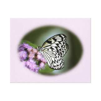 Mariposa blanco y negro de la ninfa lienzo envuelto para galerias