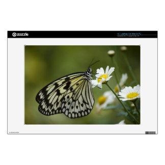 Mariposa blanco y negro de la ninfa skins para portátiles