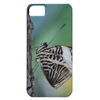 Mariposa blanco y negro del tigre iPhone 5 fundas