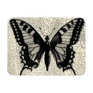Mariposa blanco y negro en fondo agrietado rectangle magnet