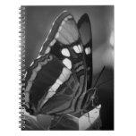 Mariposa blanco y negro libro de apuntes con espiral